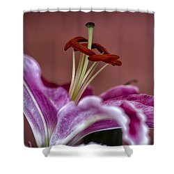 Blushing Bloom Shower Curtain