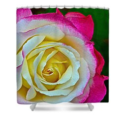 Blushing Rose Shower Curtain by Bill Owen