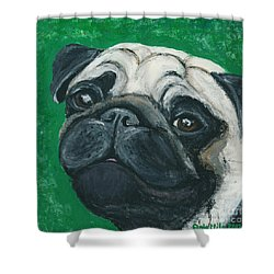 Bo The Pug Shower Curtain by Ania M Milo