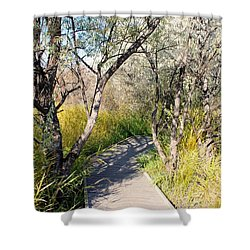 Boardwalk To The Birds Shower Curtain by John  Greaves