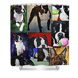 Boston Acrylic Collage Shower Curtain by Susan Herber