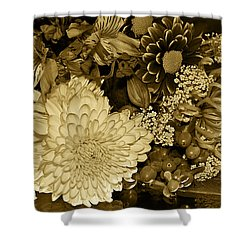Bouquet In Sepia Shower Curtain by Phyllis Denton