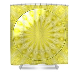 Bouquet Of Roses Kaleidoscope 7 Shower Curtain by Rose Santuci-Sofranko