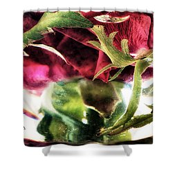 Bowl Of Roses Shower Curtain by Stelios Kleanthous