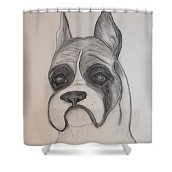 Boxer Shower Curtain by Maria Urso