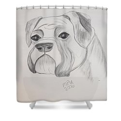 Boxer No Crop Shower Curtain by Maria Urso
