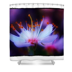Shower Curtain featuring the photograph Bradford Ballet by Judi Bagwell