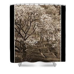 Branchbrook Park In Sepia Shower Curtain
