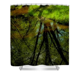 Branches Of Life Reflects Shower Curtain by Karol Livote