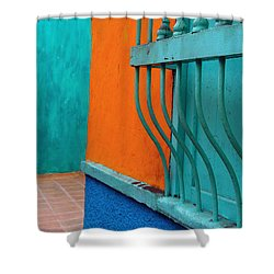Break Out Shower Curtain by Skip Hunt