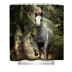 Breaking Dawn Gallop Shower Curtain by Wes and Dotty Weber