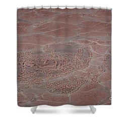 Breeding Colonies Of Flamingos Shower Curtain by Gregory G. Dimijian