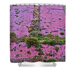 Shower Curtain featuring the photograph Brick Wall by Bill Owen