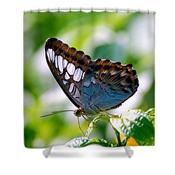 Shower Curtain featuring the photograph Bright Blue Butterfly by Peggy Franz
