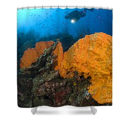 Bright Orange Sponge With Diver Shower Curtain by Steve Jones
