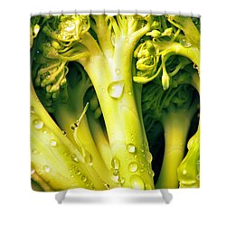 Broccoli Scape I Shower Curtain by Nancy Mueller
