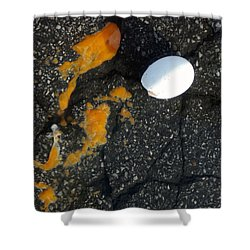 Broken White Egg And Orange Yolk On Black Ground Shower Curtain by Matthias Hauser