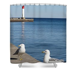 Shower Curtain featuring the photograph Bronte Lighthouse Gulls by Laurel Best
