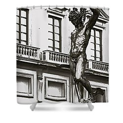 Shower Curtain featuring the photograph Bronze Icon by Eric Tressler