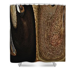 Brown Metal Shower Curtain by Skip Nall