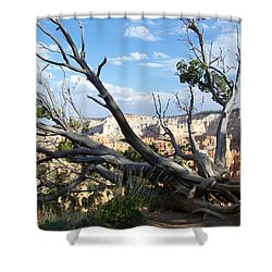 Shower Curtain featuring the photograph Bryce Canyon by Dany Lison