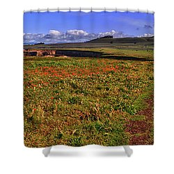 Buchon Trail Shower Curtain