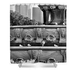 Buckingham Fountain - 5 Shower Curtain by Ely Arsha