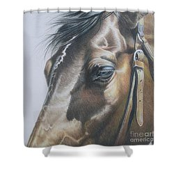 Buckles And Belts In Colored Pencil Shower Curtain by Carrie L Lewis