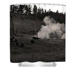 Buffalo Apocalypse  Shower Curtain