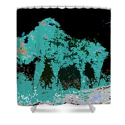 Buffalo Hump Shower Curtain by David Lee Thompson