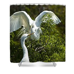 Building Our Home Shower Curtain by Carolyn Marshall