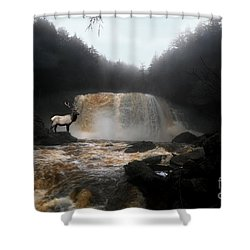 Shower Curtain featuring the photograph Bull Elk In Front Of Waterfall by Dan Friend