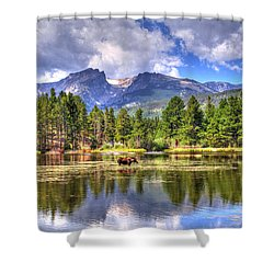 Bull Moose Wading Shower Curtain by Scott Mahon
