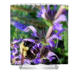 Bumble Bee On Flower Shower Curtain by Renee Trenholm