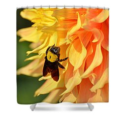 Bumblebee Shower Curtain by Fotosas Photography