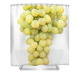 Bunch Of Grapes Shower Curtain by Maj Seda