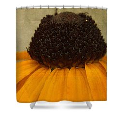 Burr Berry Shower Curtain by Ed Smith