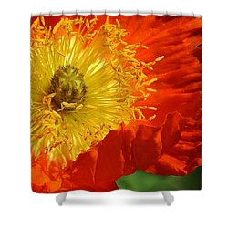 Bursting Peony Shower Curtain