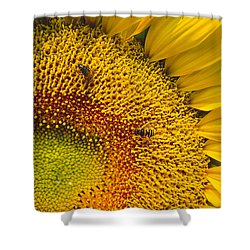 Busy Sunflower Shower Curtain
