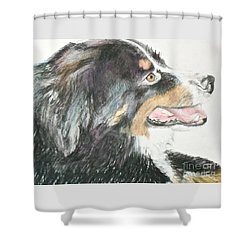 Shower Curtain featuring the drawing Buttercup The Wonderdog by Beth Saffer