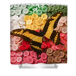 Butterfly And Buttons Shower Curtain by Garry Gay