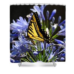 Butterfly Catcher Shower Curtain by Lynn Bauer