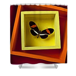 Butterfly In Box Shower Curtain by Garry Gay