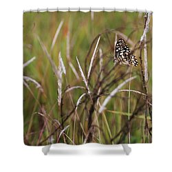 Shower Curtain featuring the photograph Butterfly In Flight by Fotosas Photography