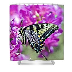 Butterfly On Azalea Shower Curtain