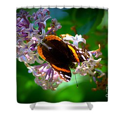 Butterfly On Lilac Shower Curtain by Kevin Fortier