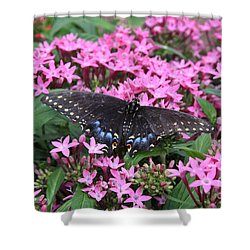 Butterfly Pinkflowers Shower Curtain