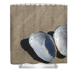 Shower Curtain featuring the photograph Shells And Shadows by Maciek Froncisz