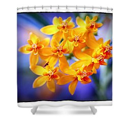 Shower Curtain featuring the photograph Butterfly Weed by Judi Bagwell