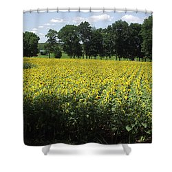 Buttonwood Farm Shower Curtain